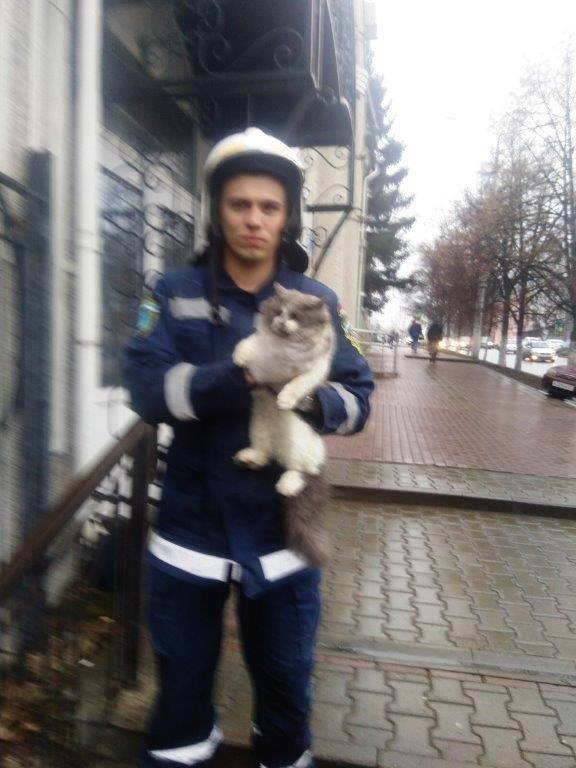 Под Белгородом спасли провалившуюся в колодец собаку, фото-3