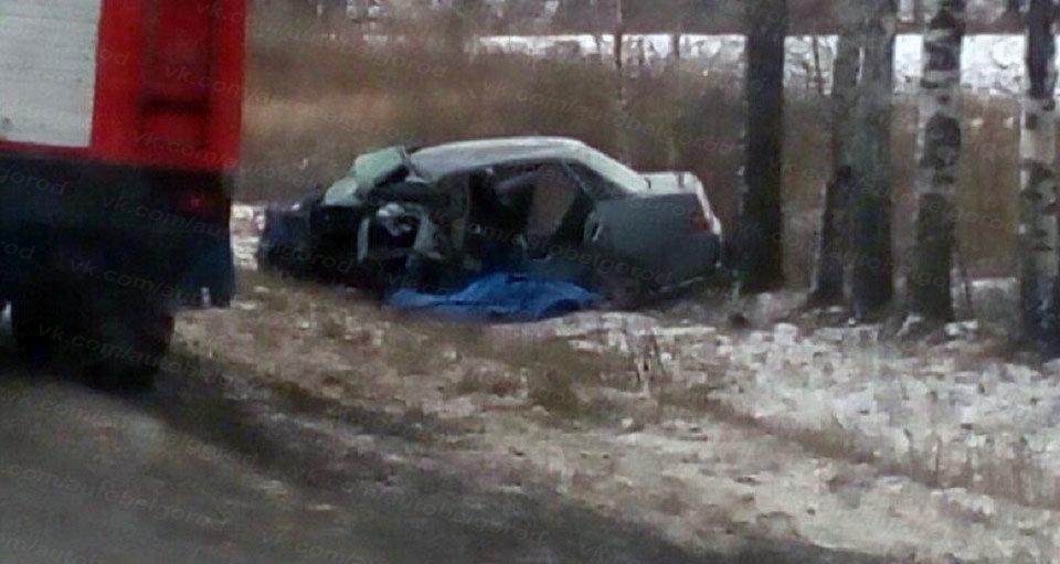 В Шебекинском районе в столкновении тягача с ВАЗом погиб мужчина , фото-2
