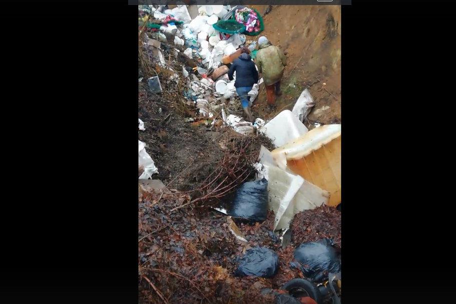 В Белгородском районе убирают свалку с трупами животных, фото-1