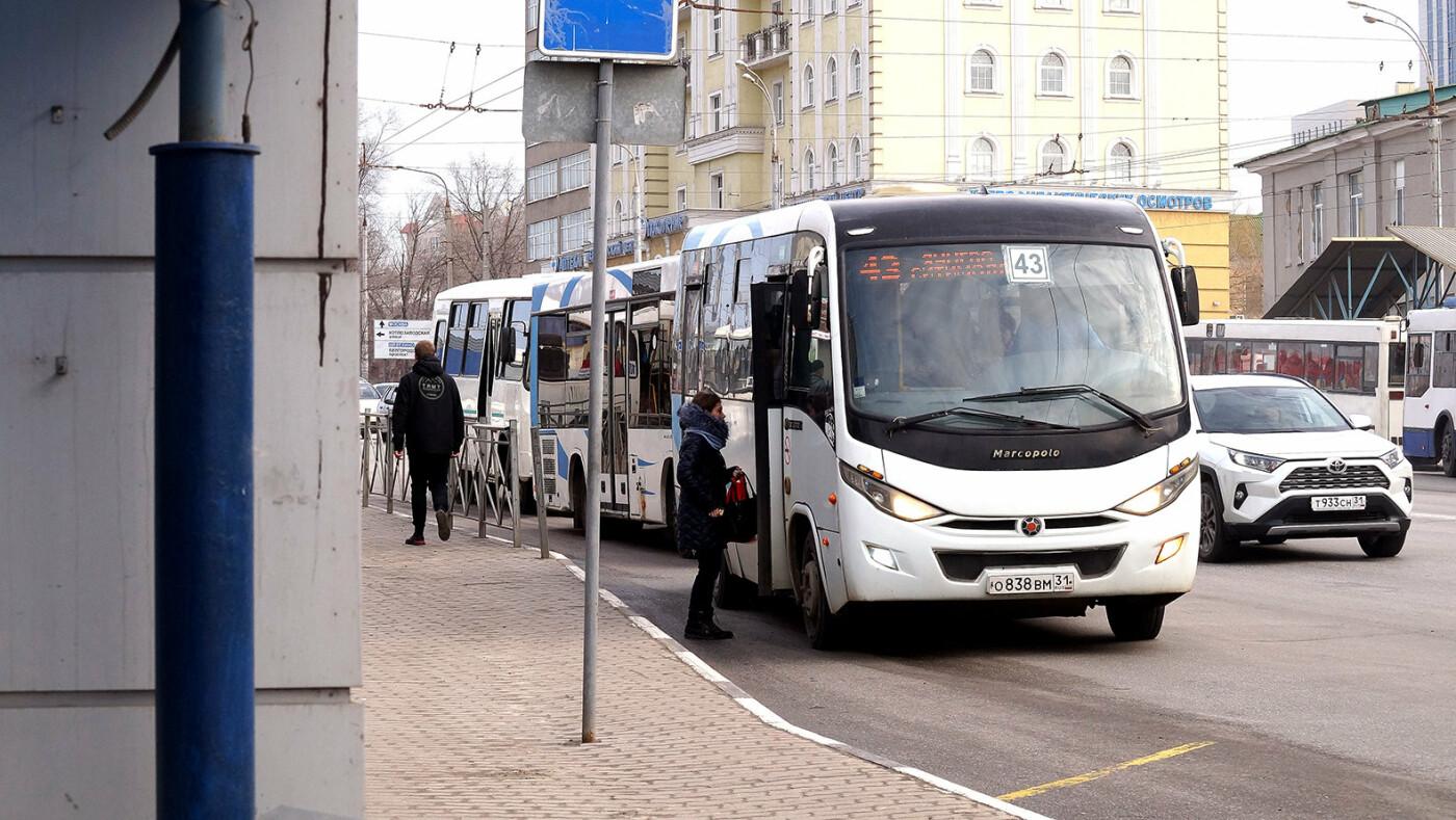 Бегущая неделя. Коронавирус в Белгороде, платить по-новому, благоустройство без деревьев, фото-1