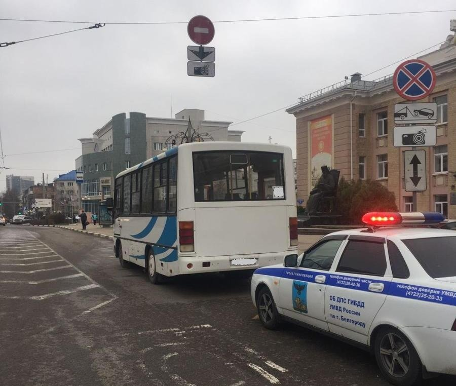 В Белгороде пострадала пассажирка резко затормозившего автобуса, фото-1