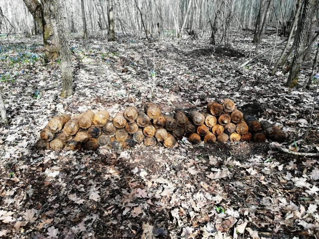 Под Белгородом нашли схрон боеприпасов, фото-2