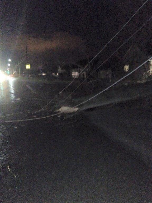 В Белгородской области штормовой ветер повалил деревья и оборвал провода, фото-2