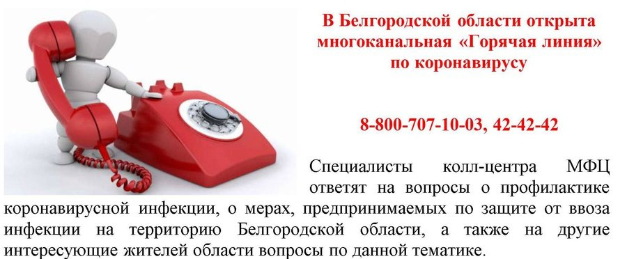 В Белгородской области открыта горячая линия по коронавирусу, фото-1