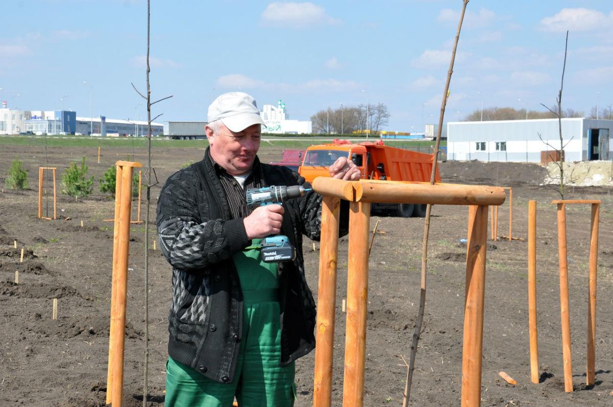 В Белгородской области позеленеют дорожные кольца, фото-5