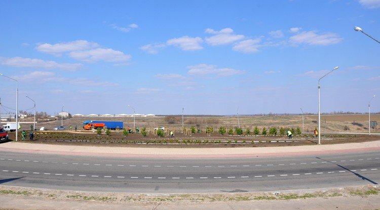 В Белгородской области позеленеют дорожные кольца, фото-8