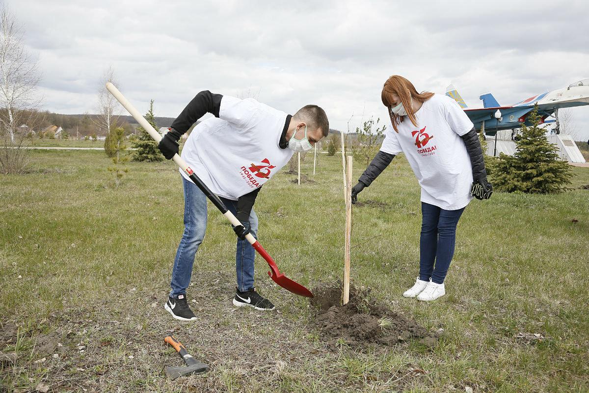 Глава «Россети Центр» проверил работу белгородских энергетиков , фото-5