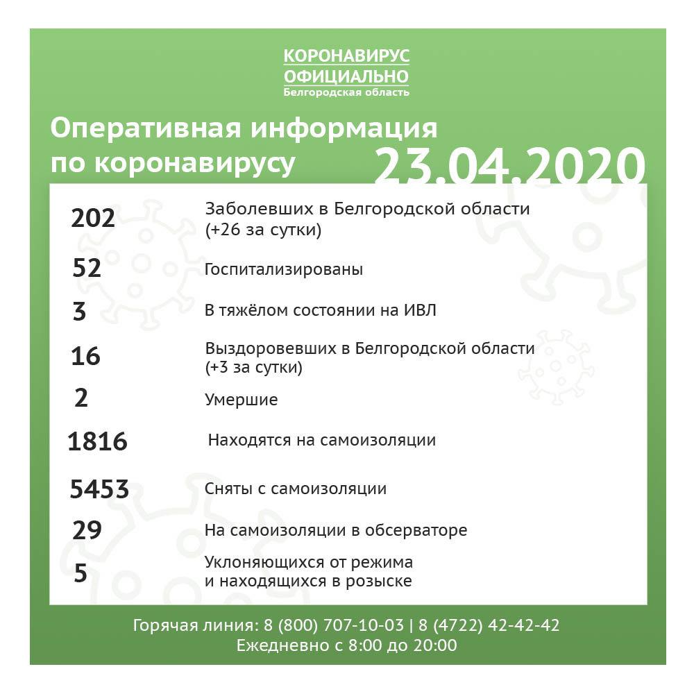 Где в Белгородской области повысилась заболеваемость коронавирусом, фото-1