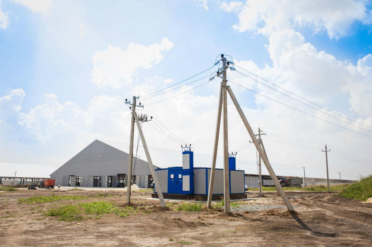 За слив масла с электроподстанций в Белгородской области возбуждено три уголовных дела, фото-1