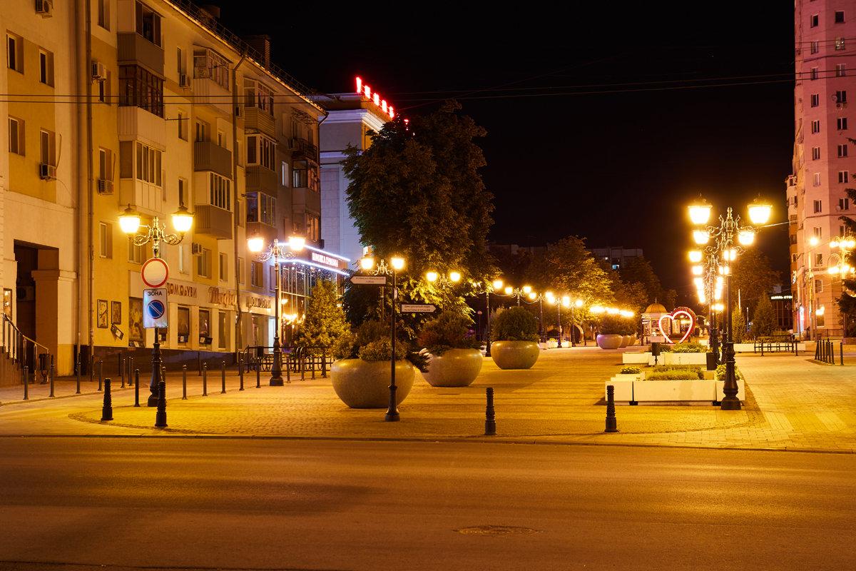 На улицах Белгорода установят 4 тысячи светодиодных светильников, фото-1