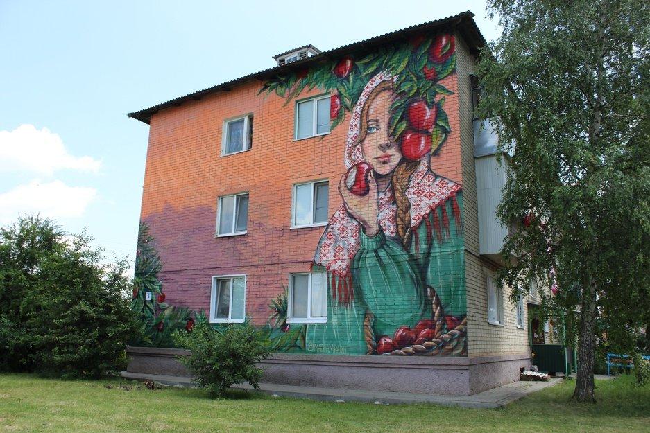 Белгородские дома украсят настенными изображениями, фото-2