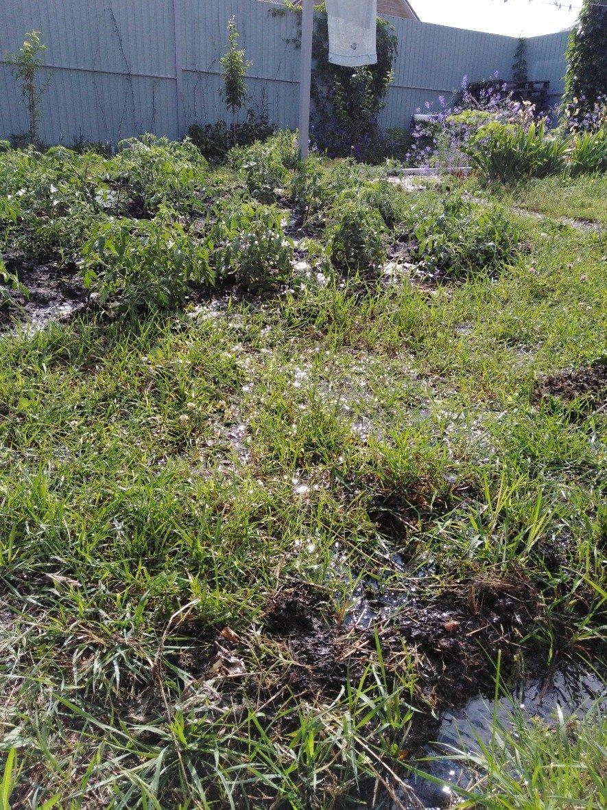 Белгородка вынуждена копать траншеи, чтобы спасти дом от подтопления, фото-3