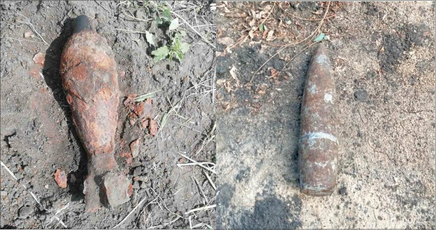 Белгородец нашёл у себя в огороде миномётную мину, фото-1