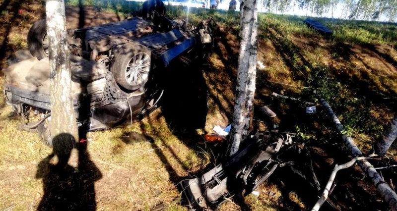 В Дубовом лихач на зебре сбил дедушку с внучкой, фото-1