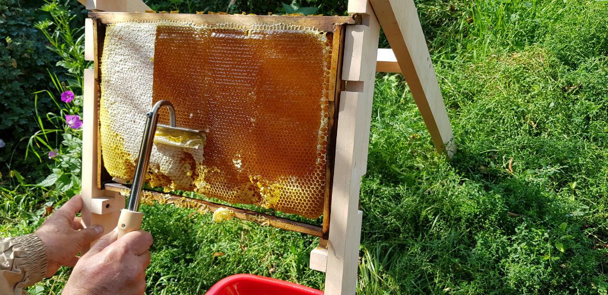 Инструменты для пчеловодов Белгородской слюдяной фабрики были в центре внимания межрегиональной выставки, фото-5