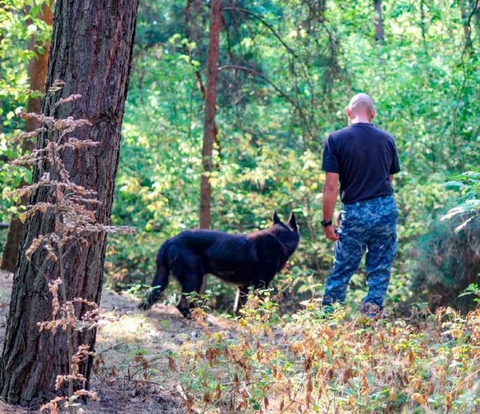 Четвероногие полицейские. В Старом Осколе собаки ищут останки погибших девушек, фото-2
