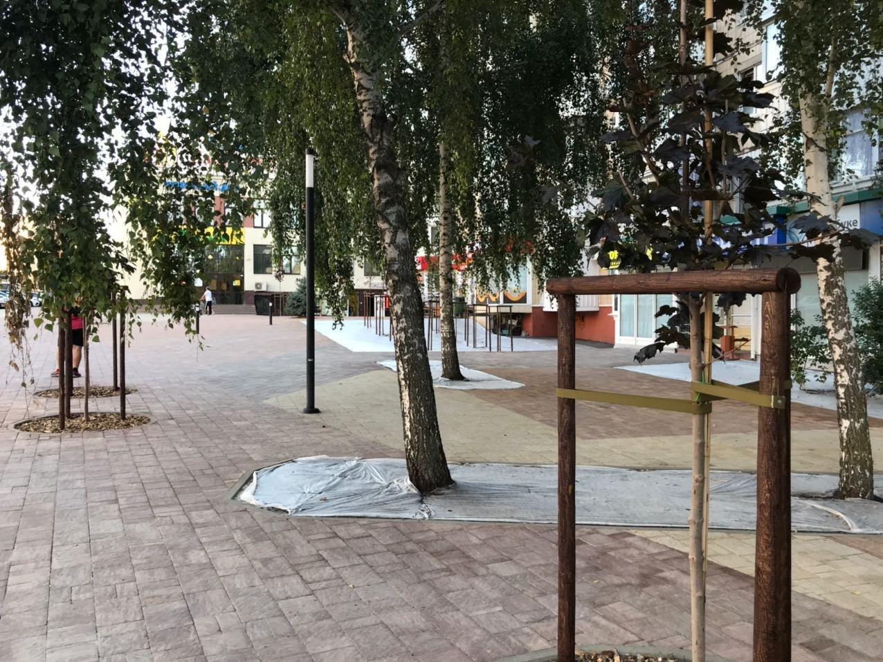 В Белгороде благоустроили сквер на улице Спортивной, фото-2