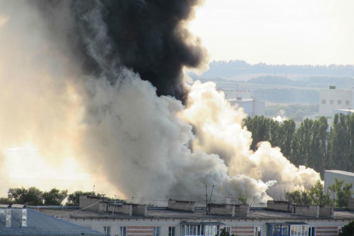 Бегущая неделя. Школьное питание, крупные пожары, топим за «ЕдРо», фото-6