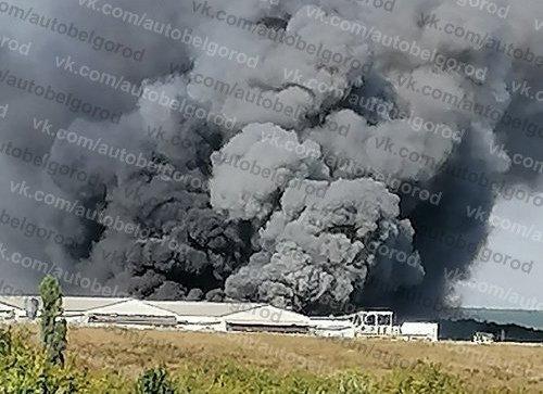 Бегущая неделя. Школьное питание, крупные пожары, топим за «ЕдРо», фото-1