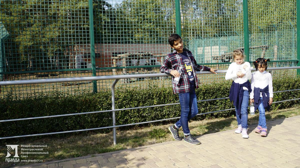 Профсоюз «Правда» подарил воспитанникам социально-реабилитационного центра поход в зоопарк и бургер-вечеринку , фото-2