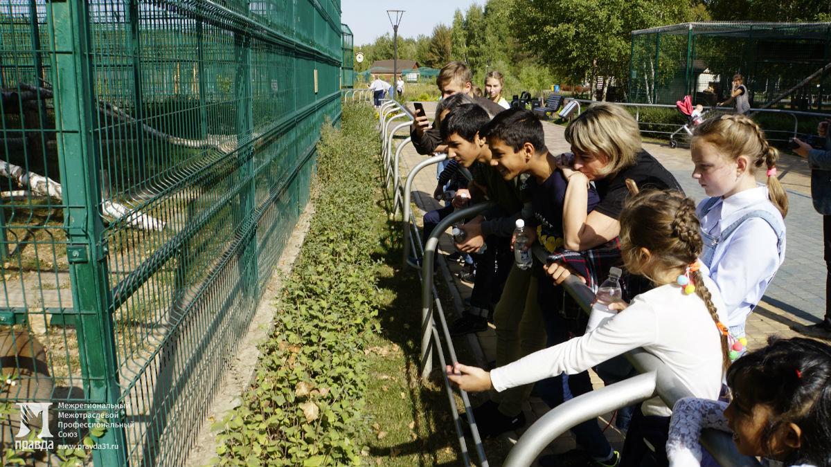 Профсоюз «Правда» подарил воспитанникам социально-реабилитационного центра поход в зоопарк и бургер-вечеринку , фото-1
