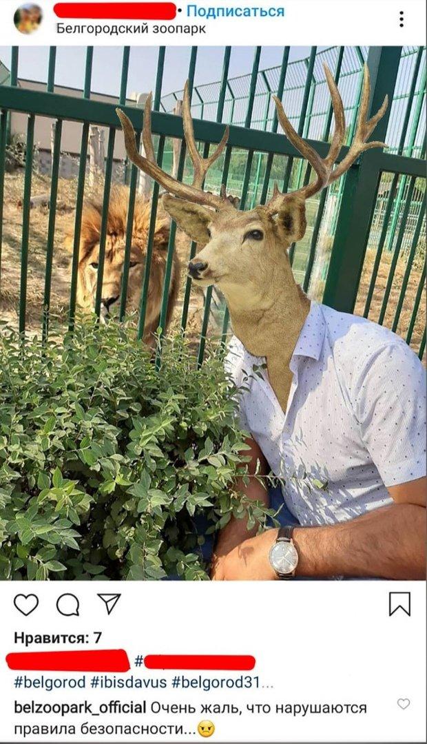 Белгородский зоопарк изобразил посетителя оленем, фото-1