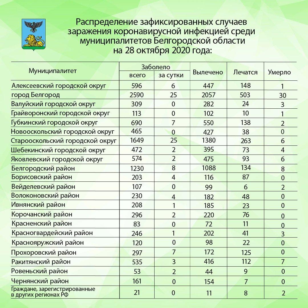 За сутки в Белгороде и Старом Осколе ковид подхватили по 25 человек, фото-1