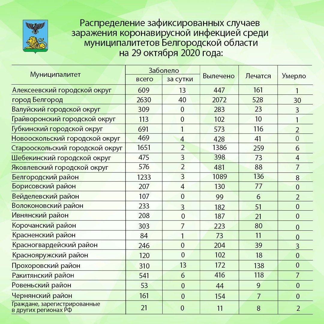 В Белгороде за сутки коронавирус подтвердили у 40 человек, фото-1