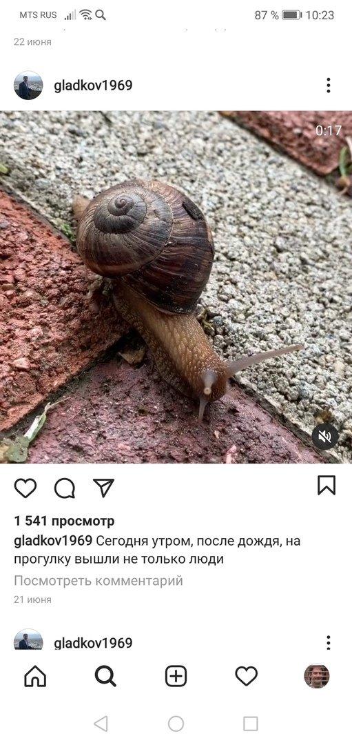 Вырезки из Instagram, Вячеслав Гладков
