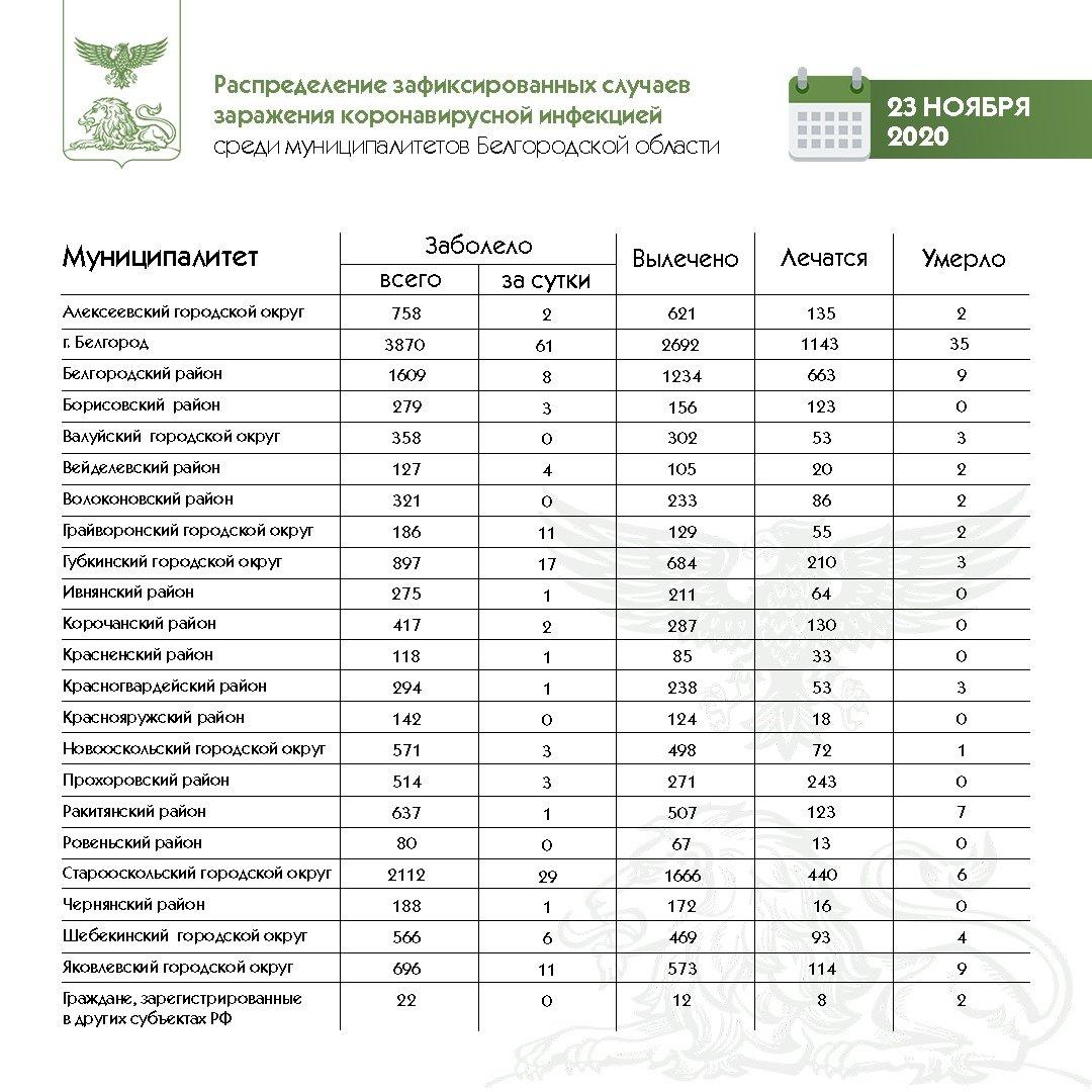 Статистика заболеваемости коронавирусом в Белгородской области