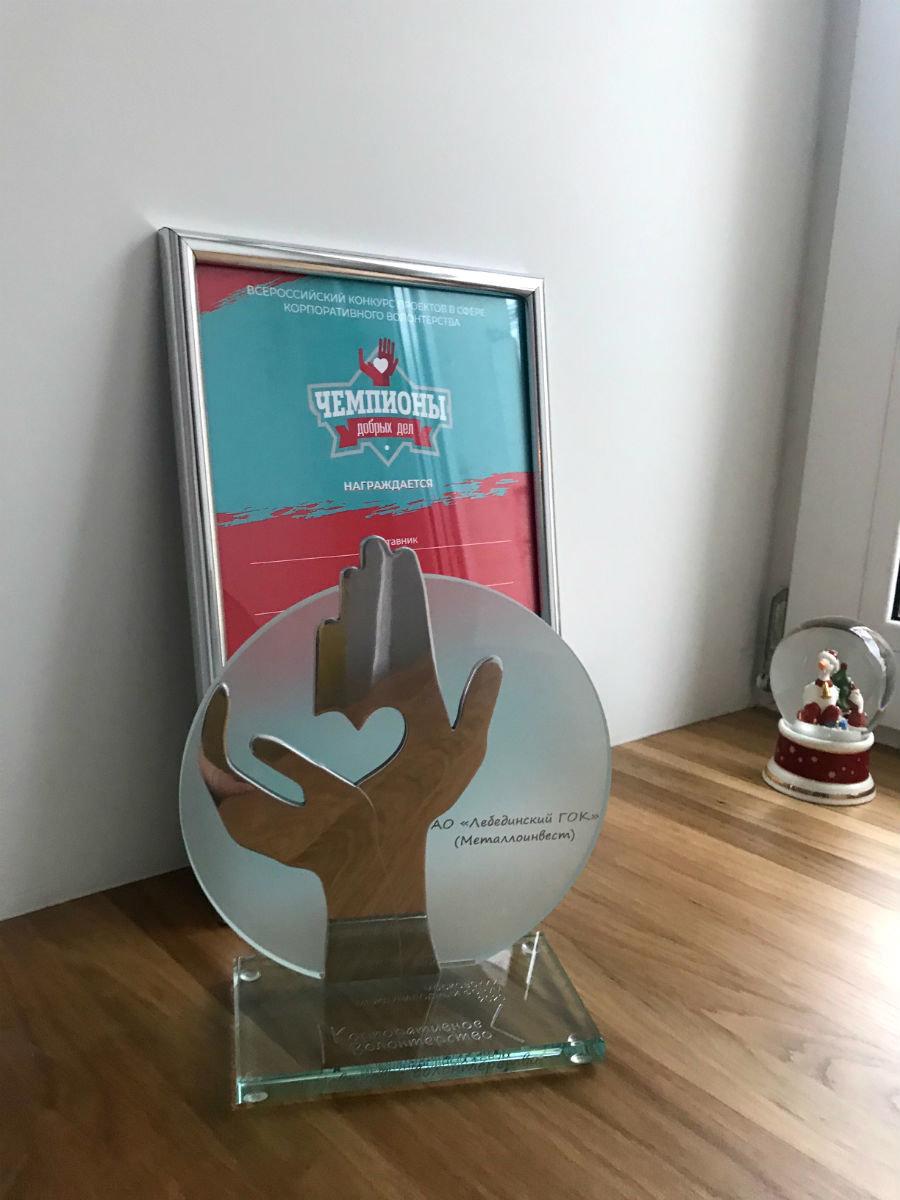 «Металлоинвест» дважды отмечен на конкурсе «Чемпионы добрых дел 2020», фото-1