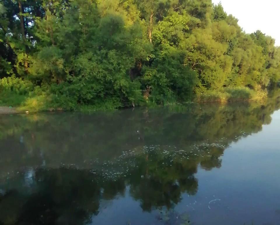 Белгородцы пожаловались на сброс отходов в реку Оскол