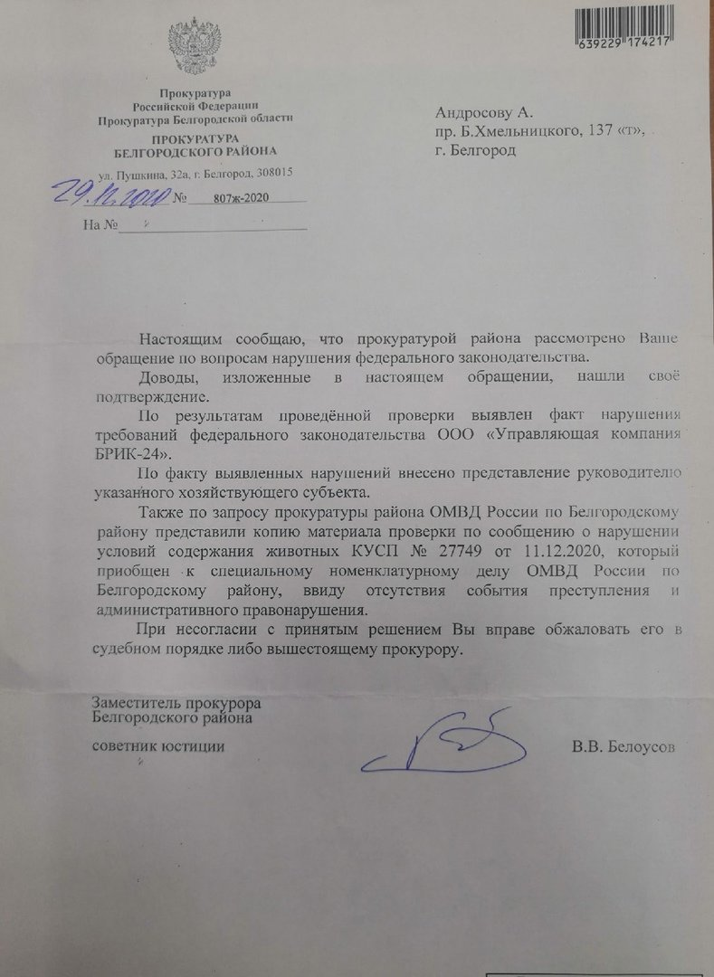 Ответ прокуратуры волонтёрам, «Скорая молодёжная помощь»