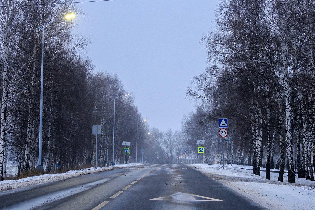 За год белгородские энергетики осветили 28 километров автодорог региона, фото-3