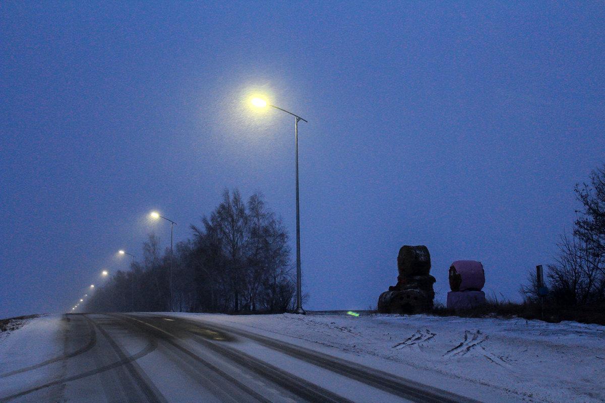 За год белгородские энергетики осветили 28 километров автодорог региона, фото-2