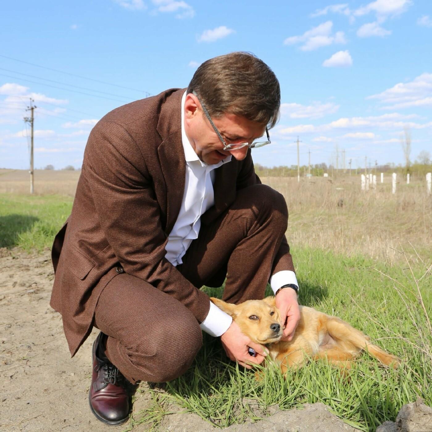 Мэр Старого Оскола приютил брошенного на дороге щенка, фото-2