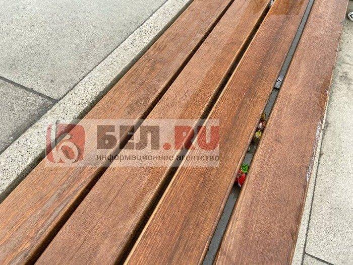 Вандалы изуродовали скамейки возле «Белгород Арены», фото-5